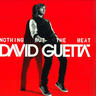 NOTHING BUT THE BEAT ( 2 LP )